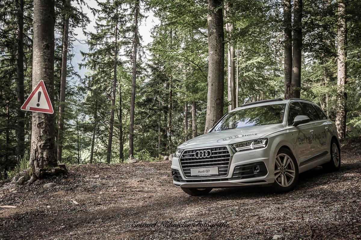Audi Q7 -10. Juni 2015  -  11